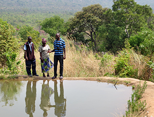 Green Living Movement Luanshimba